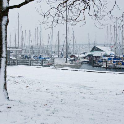 SHM_in_winter_1-a0570d5610